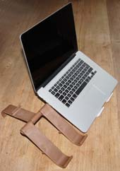 laptop with tree-pod